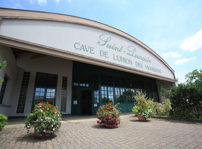 Cave Union des Vignerons