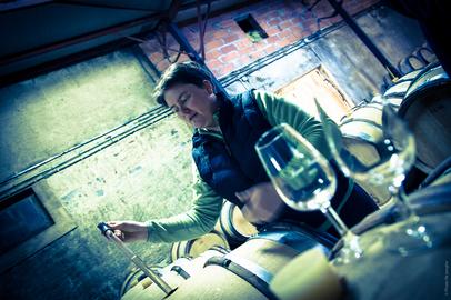 Travail vin Caves Laurent