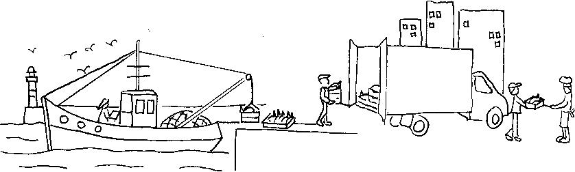 shéma marée